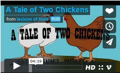 Tale of two chicken