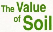 The value of soil